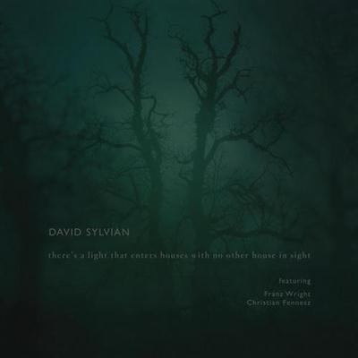 David Sylvian - There's A Light That Enters Houses With No Other House In Sight (2014)