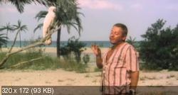 Синьор-Робинзон (1976) DVDRip от MediaClub {Android}