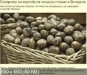 http://i67.fastpic.ru/thumb/2014/0725/25/ef6e1c2dd2c9fc5b54858a57c79eb025.jpeg