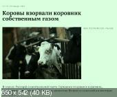 http://i67.fastpic.ru/thumb/2014/0725/d3/734562e22153aef7bb451aced32944d3.jpeg