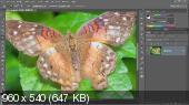 Photoshop CC Один-на-Один: Средний уровень (2013) Видеокурс