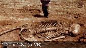 Подлинная история человечества (2014) HD 1080p