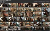 Beach House Bonanza 2 (2011/DVDRip)