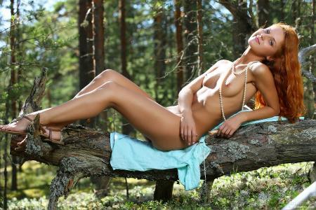MPLStudios: Colette - Radiant Forest (12*09*2014)