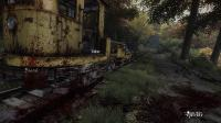 The Vanishing of Ethan Carter (2014/RUS/ENG/MULTI6/Full/Repack)  скачать с letitbit