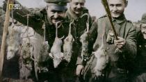National Geographic: �����������: ������ ������� ����� / Apocalypse: World War I [1-5 ����� �� 5] (2014) HDTV 1080i