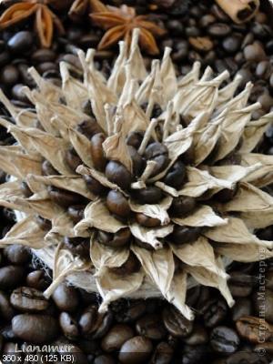 Цветы из кофейных зерен и шпагата – мастер-класс    C06280dea198d9c126f05aa3c1802b3a