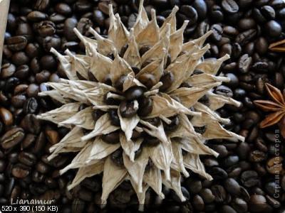 Цветы из кофейных зерен и шпагата – мастер-класс    F5f45ad569290763b8a143469d74cdbf