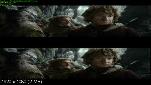 Хоббит: Пустошь Смауга 3д / The Hobbit: The Desolation of Smaug 3D [Extended Edition]  (Лицензия by Ash61) Вертикальная анаморфная