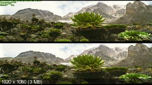 Заколдованное королевство 3Д / Enchanted Kingdom 3D Вертикальная анаморфная