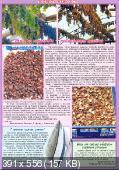 1000 советов (№19, октябрь / 2014)