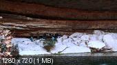http://i67.fastpic.ru/thumb/2014/1119/03/edd051ea565374e4c4dd09a49c801303.jpeg