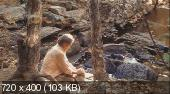 ������� ������� / Robot Stories (2003) DVDRip | MVO