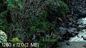 http://i67.fastpic.ru/thumb/2014/1119/d4/ccb23aa0251abf048ec79758a35204d4.jpeg