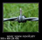 Демотиваторы '220V' 05.12.14