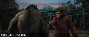 Восстание планеты обезьян / Rise of the Planet of the Apes (2011) BDRip-AVC | DUB | Лицензия