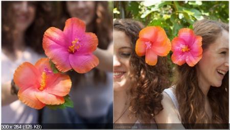 Цветы из гофрированой бумаги C44a342c7e93192e28700d2627d41d88