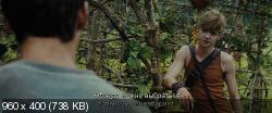 Бегущий в лабиринте (2014) BDRip-AVC от HELLYWOOD {Лицензия}