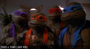 Черепашки-ниндзя: Антология / Teenage Mutant Ninja Turtles: Antology (1990-2014) BDRip 1080p от R.G. HD-Films | 60 fps