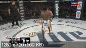 Смешанные единоборства. MMA. Bellator 132: Патрисио Фрейре – Дэниел Страус + Основные бои [16.01] (2015) HDTVRip 720p