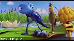 Пчёлка Майя / Maya The Bee – Movie (2014) BDRemux 1080p | DUB | iTunes