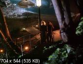������� ���� / Dangerous Game (1993) DVDRip   DVO