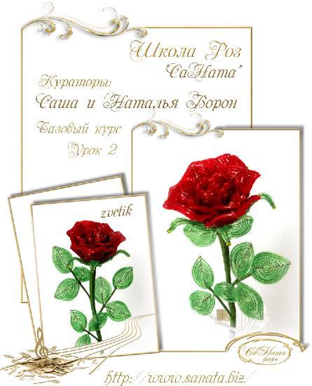 Школа Роз. Выпуск Базового курса 27270a3453e81c7b349f3b0d6bc29741