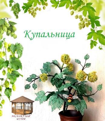 http://i67.fastpic.ru/thumb/2015/0317/11/d65b59f4215947af504fc0376254c911.jpeg