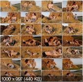 TeenDorf - Branislava - Hot Sex In The Hay With A Young Girl [FullHD 1080p]