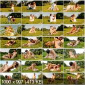 TeenDorf - Aneta - Hot Sex Adventure Outdoor [HD 720p]
