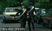 ����������� ���������� / I carabbimatti (1981) DVDRip | AVO