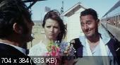 Красивый, честный эмигрант в Австралии хотел бы жениться... / Bello, onesto, emigrato Australia sposerebbe... (1971) DVDRip | MVO