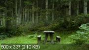 "HD Обои - ""Загадочная Природа"" 200 шт. (№900)"