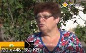 Главная дорога (эфир 26/09/2015) SATRip