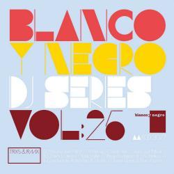 VA - Blanco Y Negro DJ Series Vol.25 (2015)