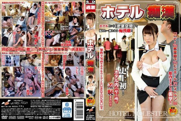 Hotel Molester (2015) DVDRip