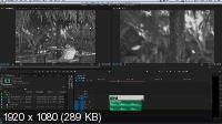 Супер Premiere Pro (2016) Видеокурс