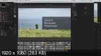 Супер Premiere Pro (2016/PCRec/Rus)